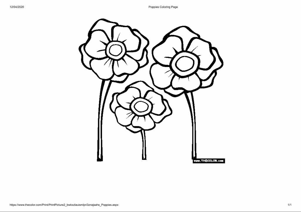 outline of 3 poppies